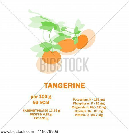 Infographic Card About Calories Of Tangerine 100g. Vitamins, Minerals And Calorie Content. Healthy F