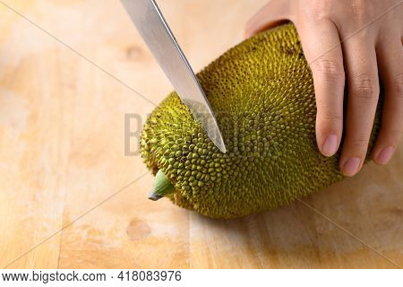 Hand Holding Young Jackfruit And Cutting By Kitchen Knife On Wooden Board, Food Ingredient In Southe