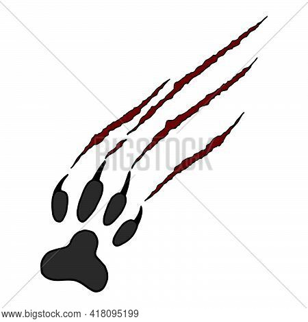 Vector Illustration Animal Footprint And Scratches On White Background. Cat's Scratched Paw.