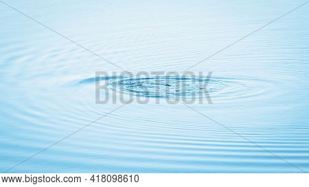 Bird Diving In The Lake Water Surface Creates A Water Ripples Effect.