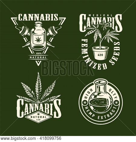 Vintage Monochrome Marijuana Logos Collection With Hemp Oil In Bottle And Tube Pipettes Cannabis Pla
