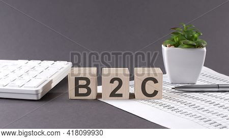 Concept Word B2c On Wooden Blocks On Gray Background From Green Flower And Chart.