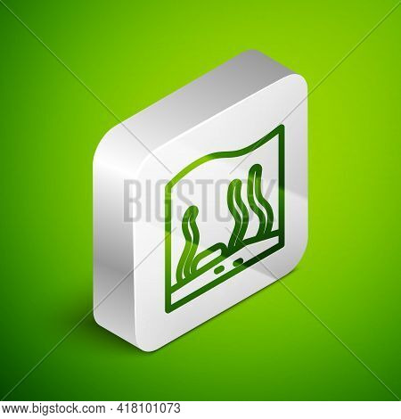 Isometric Line Aquarium Icon Isolated On Green Background. Aquarium For Home And Pets. Silver Square