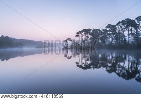Misty Pink Sunrise Over A Lake And A Row Of Trees In The Dutch Province Of Brabant