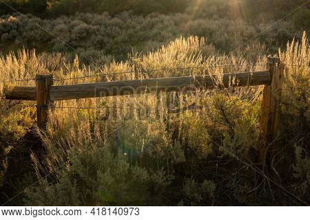 Golden Morning Light Over Fence In Sagebrush Field On The North Rim Of Black Canyon Of The Gunnison