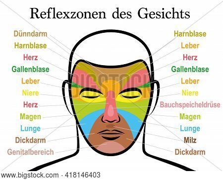 Face Reflexology Chart, German Text. Alternative Acupressure And Physiotherapy Health Treatment. Zon