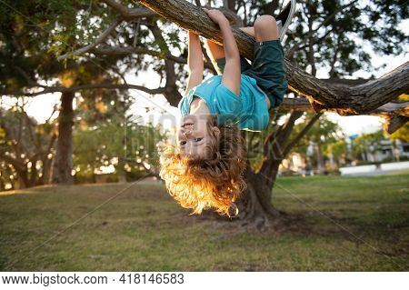 Funny Climbing Boy. Happy Child Playing In The Garden Climb On The Tree.