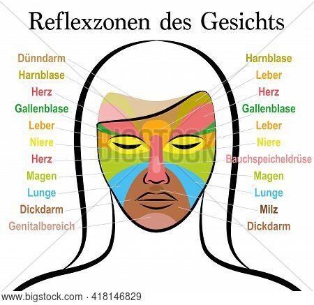 Face Reflexology Chart, German Text, Female Face. Acupressure And Physiotherapy Health Treatment. Zo