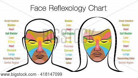 Face Reflexology Chart, Woman And Man. Acupressure And Physiotherapy Health Treatment. Zone Massage