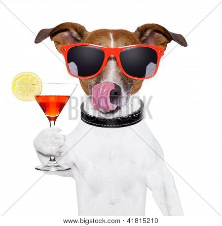 dog cooling with a martini refreshment cocktail poster