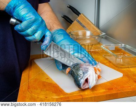 The Hands Of A Male Cook In Hygienic Gloves Cut Off The Head Of A Salmon With A Knife. Cutting Fresh