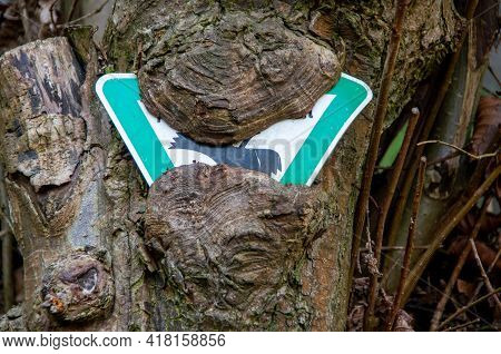 A German Sign For Nature Reserve Has Almost Completely Ingrown From A Tree. High Quality Photo