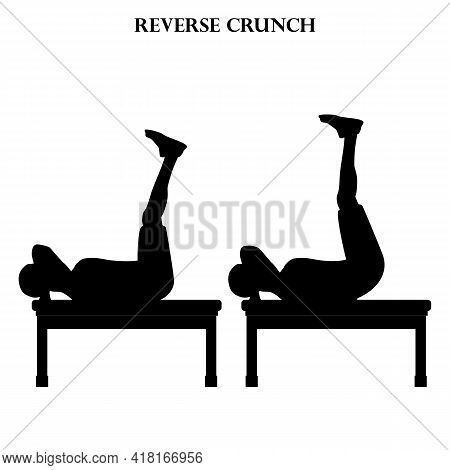 Reverse Crunch Exercise Workout Vector Illustration Silhouette On The White Background. Vector Illus
