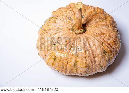 Pumpkin On Wooden Floor Background Pumpkin Mini Tientsin Pakchoi Pumpkin On White Background Organic