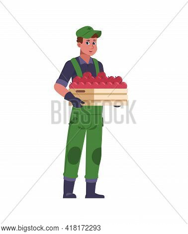Agricultural Worker. Farmer With Harvest Box. Man Holding Wooden Container Full Of Red Apples. Garde