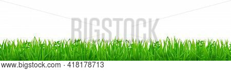 Green Grass On Spring Lawn Or Field. Horizontal Seamless Pattern With Grassland. Vector Realistic Bo