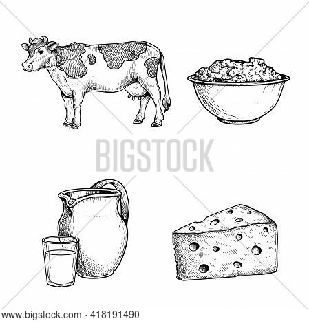 Milk And Products Sketch Set, Cow, Sour Cream, Jar And Glass With Fresh Milk And Triangle Piece Of C