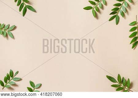 Green Leaves On Sail Champagne Trend Background. Frame For Text Of Fresh Leaves, Minimalism Style. E