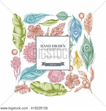 Square Floral Design With Pastel Banana Palm Leaves, Hibiscus, Solanum, Bromeliad, Peacock Feathers,
