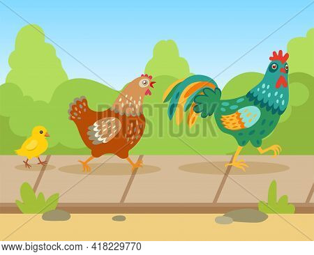 Cute Cartoon Rooster, Hen And Chick Walking Outside In Summer. Family Of Domestic Birds, Flat Vector