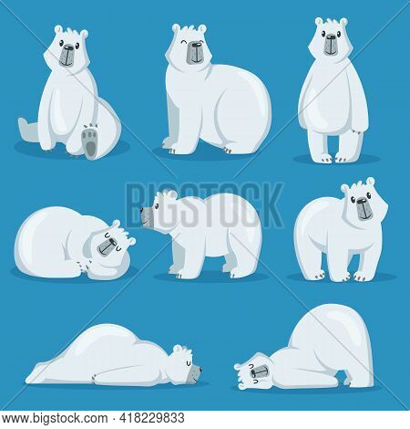 Cute Polar Bear In Various Poses Set. White Arctic Animal Sitting, Sleeping, Standing And Smiling. C