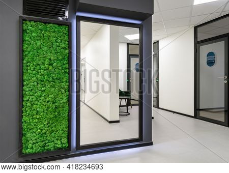 Moscow - Mar 15, 2021: Office Interior With Vertical Garden. Green Moss Wall In Clean Hallway Of Com