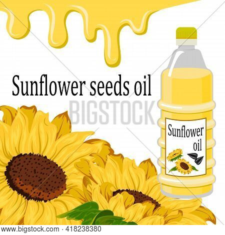 Sunflower Seed Oil In Illustration.vector Illustration With Sunflowers And Seed Oil On A White Backg