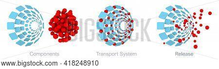 Iron Isomaltoside Transport System Scheme. A Novel Intravenous Iron Oligosaccharide For Treatment Of