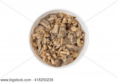 Fried Mushrooms In A Plate On A White Background. Honey Mushrooms And Oyster Mushrooms Fried In Oil