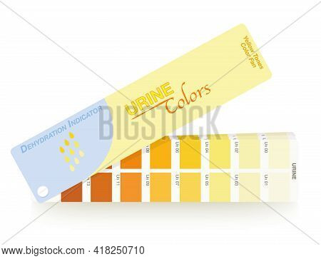 Urine Colors. Color Fan With Index From Clear Urine To Yellow And Orange And Even Darker. Indicator