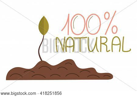 Zero Waste, 100 Natural Lettering, Leaves Ground, Isolated White Background. Recycling Garbage, Natu