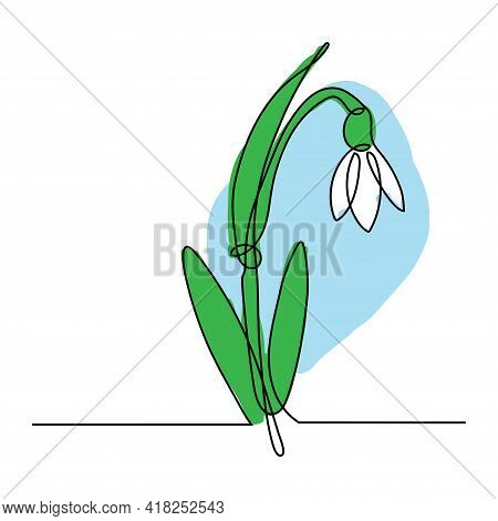 Spring Snowdrop Flower In Continuous Line Art Drawing Style. Black Linear Sketch On White Background
