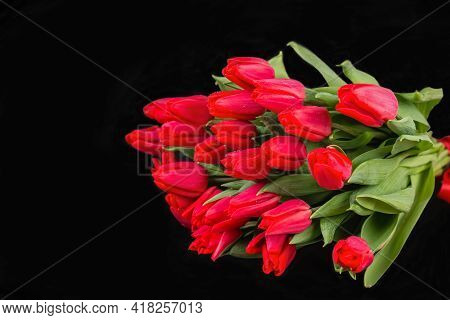 A Large Bouquet Of Beautiful Red Tulips On A Dark Black Background