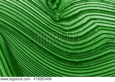 background with green color agate structure