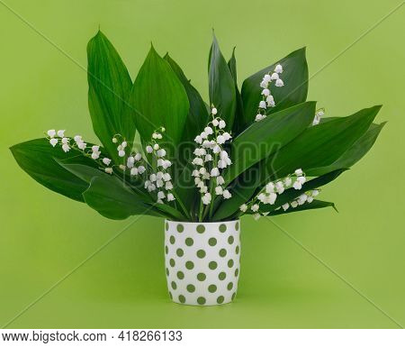 Greeting Card For Mother's Day With Bouquet Of Tender Lilies Of The Valley On  Green Background. Spr