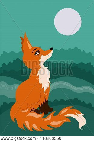Red Fox Sitting On Glade In The Forest And Looking At The Moon.