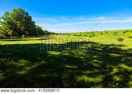 Shadow On The Green Meadow . Idyllic Summer Nature . Grassland And Blue Sky