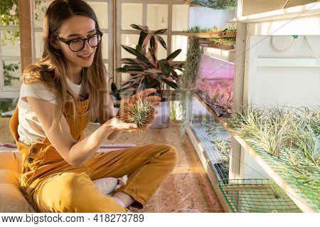 Love For Houseplants: Happy Female Florist Hold Tillandsia Plant Sitting In Cozy Room With Big Windo