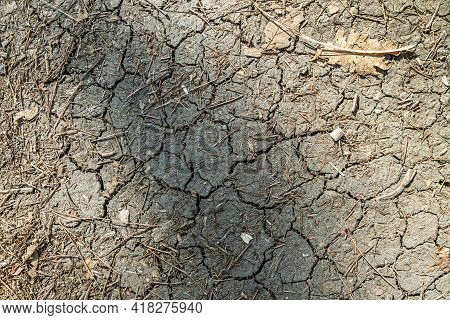 Brown Dry Cracked Ground With Dried Old Leaves.  Dried Clay Texture And Patterns Cracked Surface Of