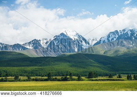 Sunny Mountain Scenery With Vivid Green Forest On Hill And Snowy Mountains In Sunlight In Low Clouds