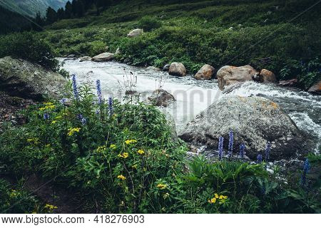 Vivid Beautiful Landscape With Wild Thickets Above Clear Water Of Powerful Mountain River. Colorful