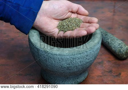 Dry Basil In A Man's Hand Close-up. A Portion Of Dried Spices In The Palm Of His Hand. Gray Stone Mo