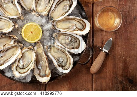 Oysters Close-up. A Dozen Of Raw Oysters With A Shucking Knife
