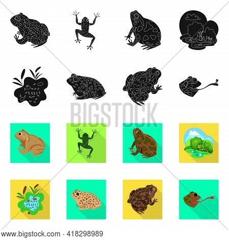Isolated Object Of Wildlife And Bog Logo. Collection Of Wildlife And Reptile Vector Icon For Stock.