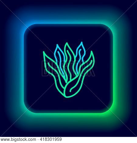 Glowing Neon Line Seaweed Icon Isolated On Black Background. Underwater Seaweed Spirulina, Aquatic M