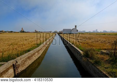 Rice Field Green Meadow Irrigation Canal Ditch