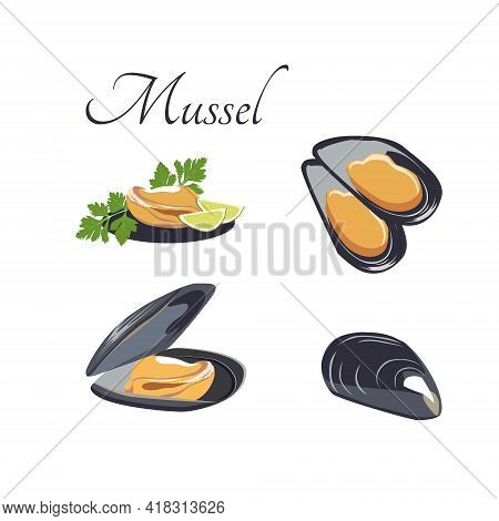 Vector Set Of Mussels For Mediterranean Cuisine, Isolated On A White Background. Top View, Side View