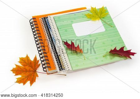 Different Closed School Exercise Books With Ordinary And Spiral Bindings And Autumn Leaves Thrown On