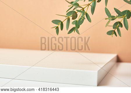 Empty Podium With Plant Leaves On Beige Pastel Background. Mock Up Geometry Shape Podium For Product
