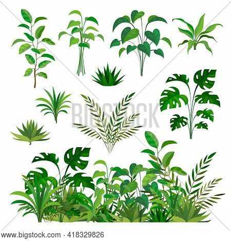 Herbal Green Elements. Tropical Jungle Leaves And Brunches Collection, Paradise Summer Flora, Rainfo